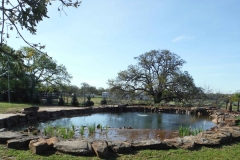 Irrigation-Pond25