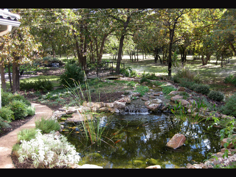 Completed Pond and Waterfall