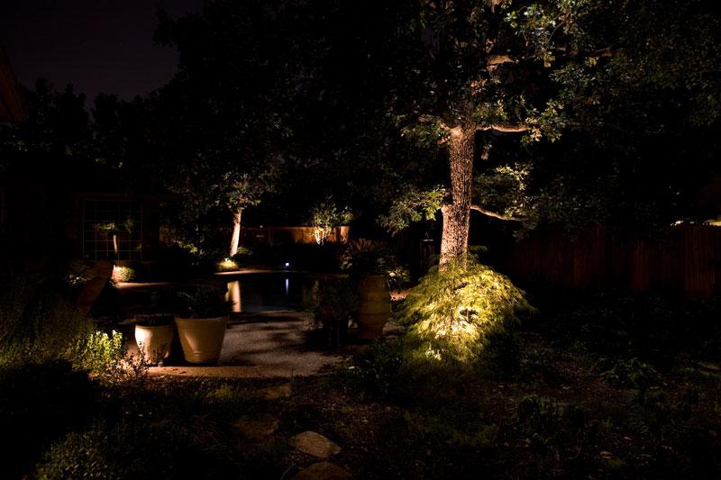 Wolf Landscape Lighting back