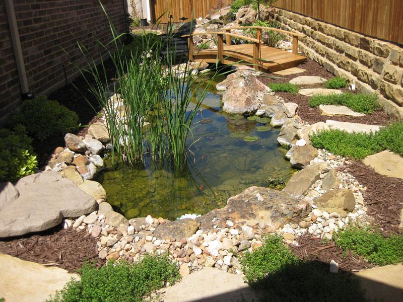 Minton Pond Feature
