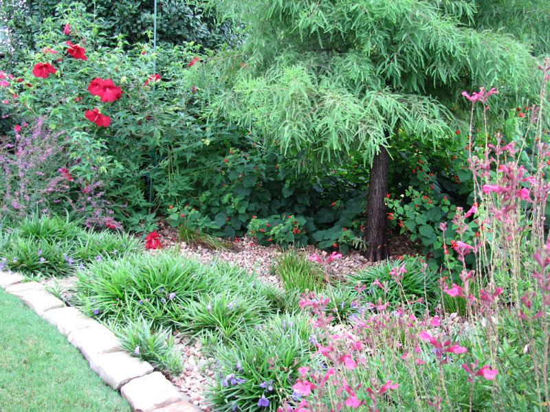 Rain Garden Drainage