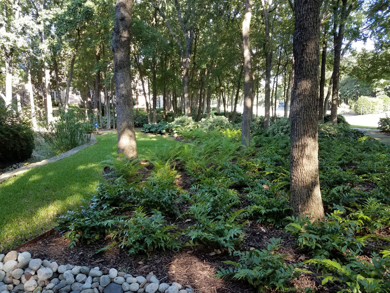 Hartzler Landscape Design and Installation