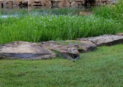 Irrigation Pond Web