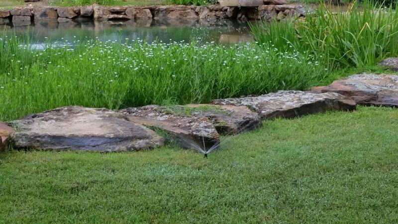 Pond Irrigation