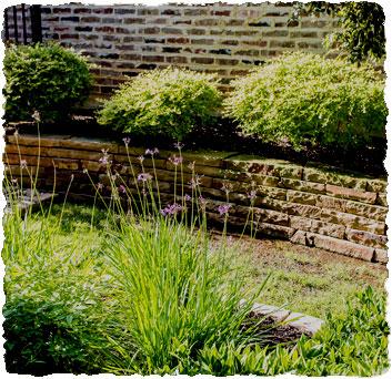 Landscape Design & Installation